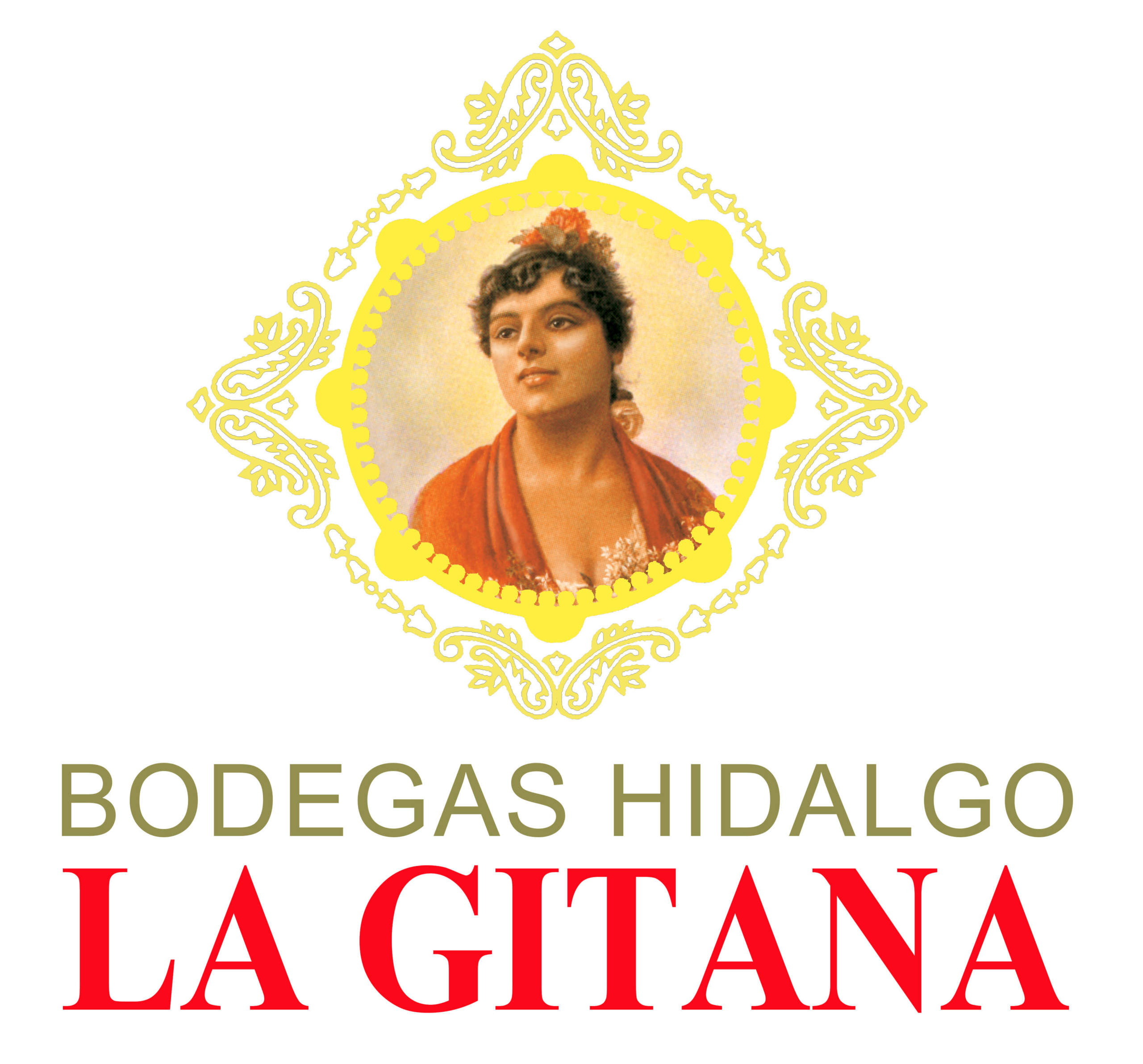 Logo for Hidalgo